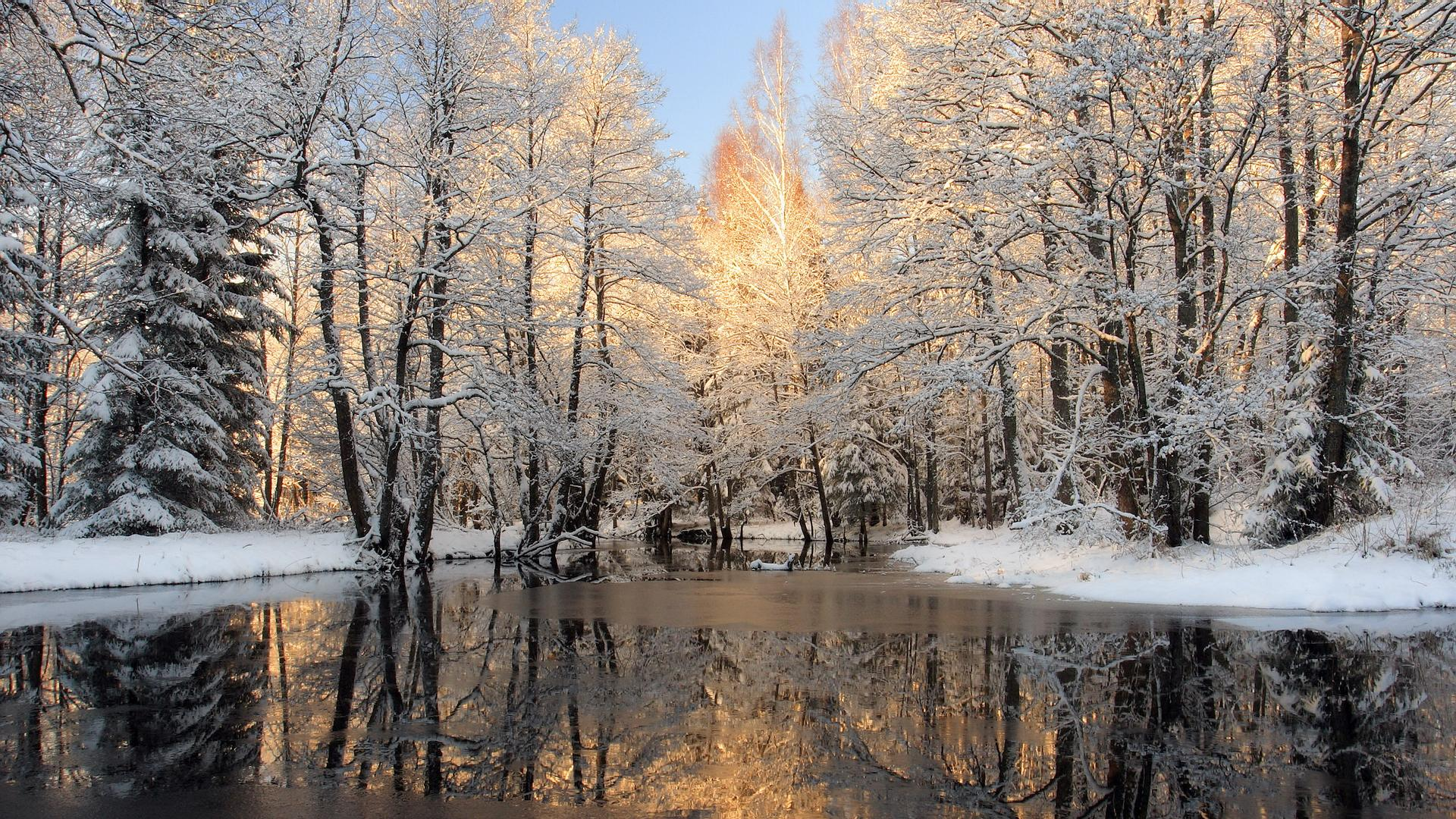 the_river_in_winter_wood